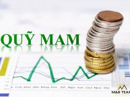 Quỹ MAM Là Gì? Cách Kiếm Tiền Với Quỹ MAMM