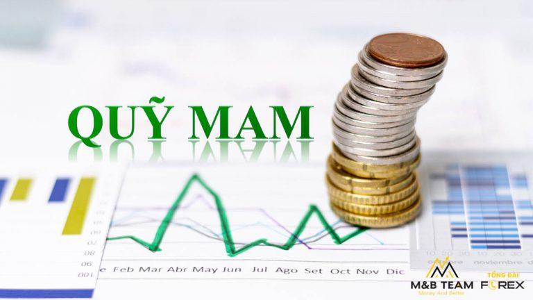 Quỹ MAM Là Gì? Cách Kiếm Tiền Với Quỹ MAM